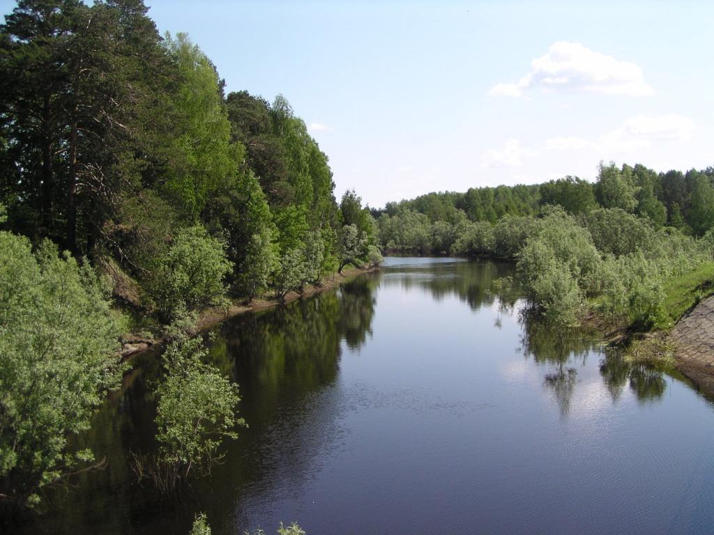 река ТУЙ.JPG