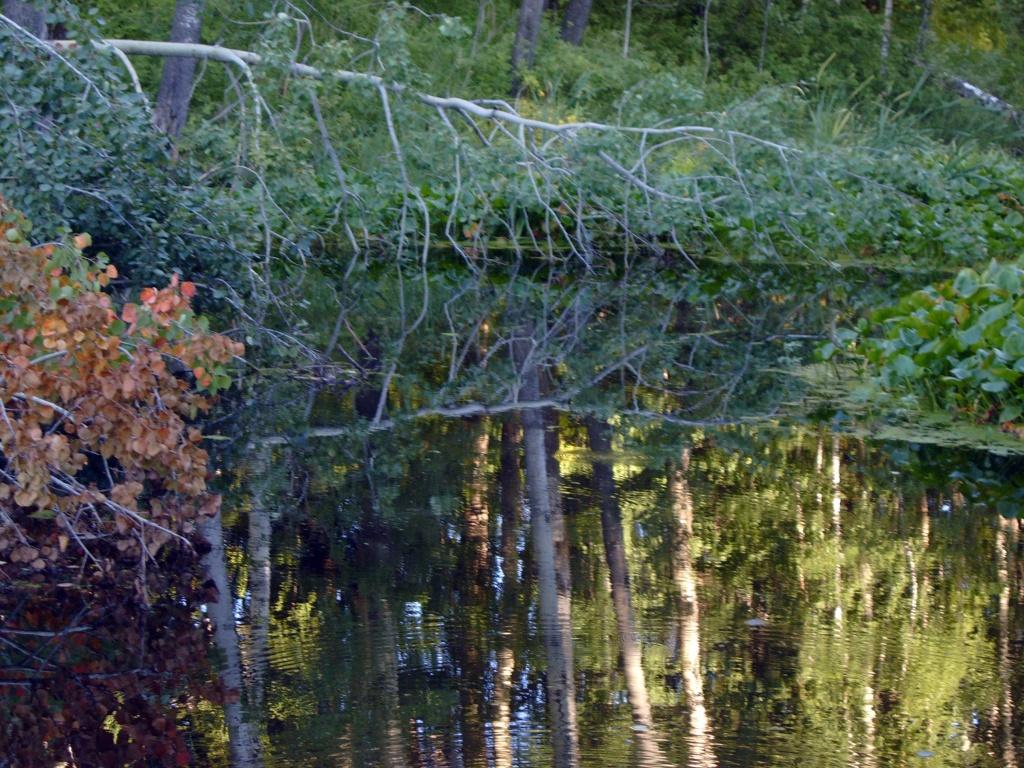 Бездонное озеро д.Бичили.jpg